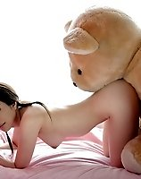 TAGS: asian, bear, from behind, horizontal, pedobear, photo, sex, stuffed animal.